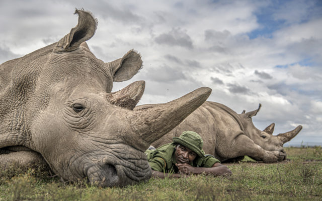 Win a Trip to Ol Pejeta Sanctuary with Ami Vitale