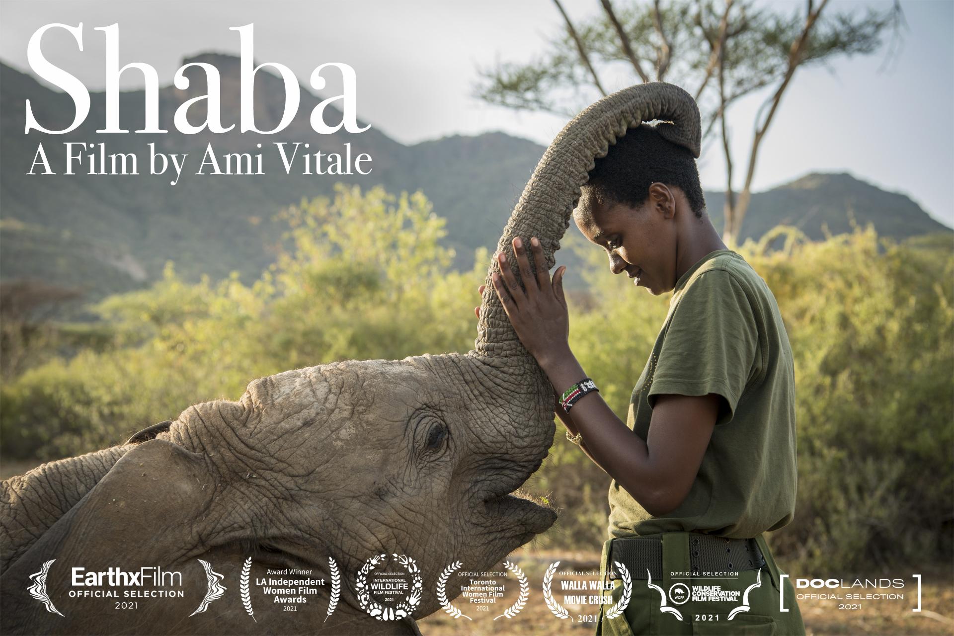 Toronto Film Magazine: About Shaba